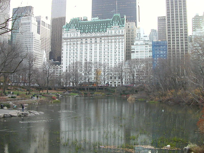 New York Architecture Images- The Plaza Hotel