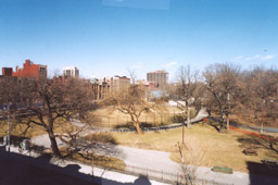 A great view of the park from owner's window